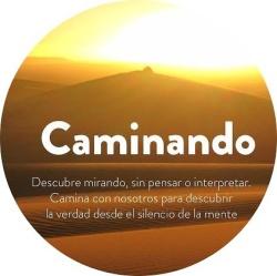 CAMINANDO-crop